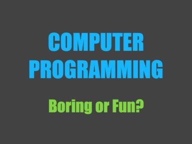 Read more about the article Can Computer Programming be Fun?